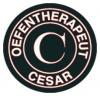 logo Cesar